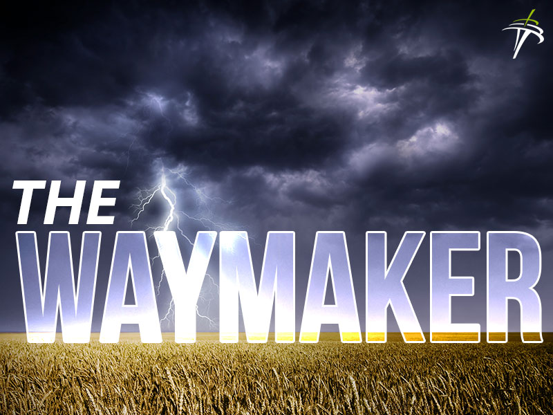 The Waymaker - Ryan Scott