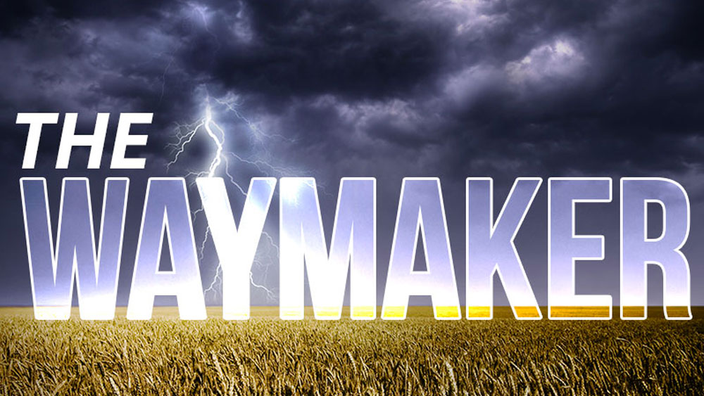 The Waymaker Image